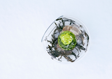 maaemo_food2