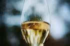 champagne011