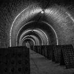 Krug cellar