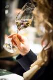 Bollinger tasting Photo Raphael Cameron20151105_0060