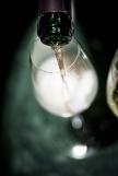 Bollinger tasting Photo Raphael Cameron20151105_0075